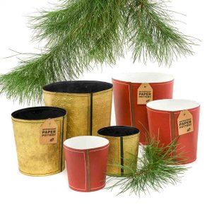 Christmas paper pots
