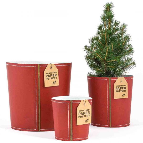 Red Christmas paper pots